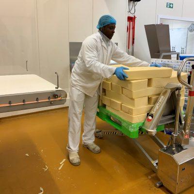 Werknemer Kaasbrik behandelt kaasblokken op ergonomische hoogte met manuele hoogheffende transpallet in inox.